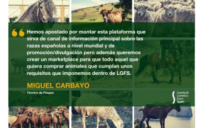 ENTREVISTA A MIGUEL CARBAYO, TÉCNICO DE FEAGAS