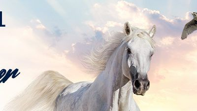 LIVESTOCK GENETICS FROM SPAIN ESTARÁ PRESENTE EN LA INTERNATIONAL HORSE FAIR DE DUBAI